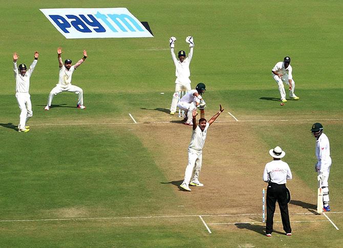 nagpur-wicket
