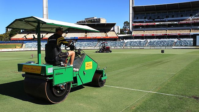 waca-perth-pitch